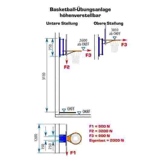 But de basket d'entraînement Sport-Thieme Avec réglage en hauteur