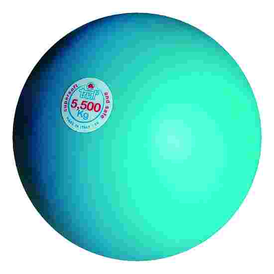 Trial Stootkogel 5,5 kg, lichtblauw