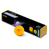 Balles de tennis de table Donic® Schildkröt
