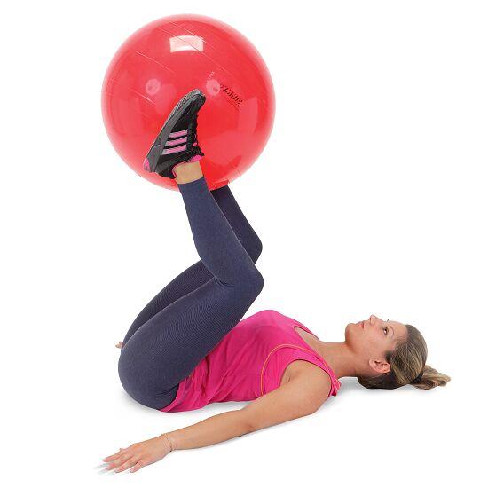 Ballon de gymnastique Gymnic® ø 55 cm