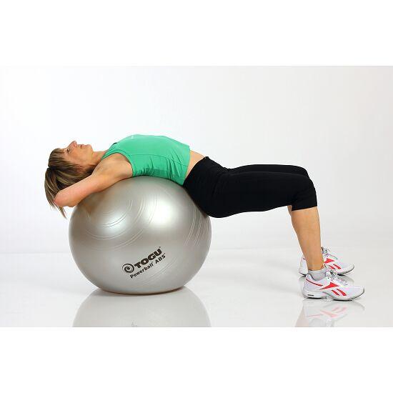Ballon de gymnastique Togu « ABS-Powerball » ø 45 cm