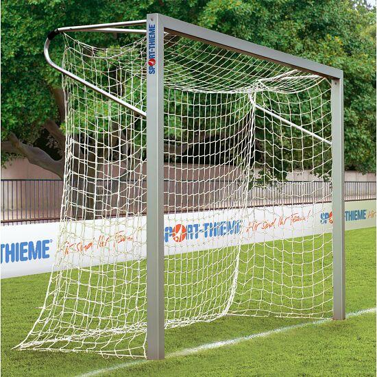 Buts 3x2 m Sport-Thieme® en aluminium, profilé carré, autostable ou avec fourreaux Avec fourreaux