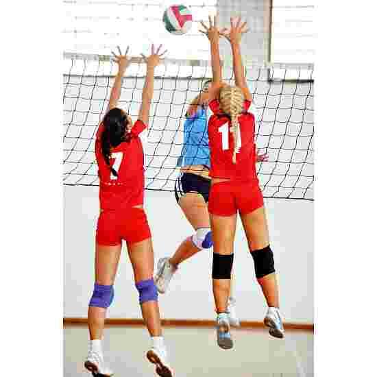 Filet de volley de compétition DVV 1 avec poulie