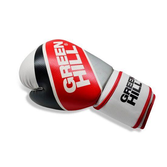 Gants de boxe Green Hill «F 120» 10 oz.