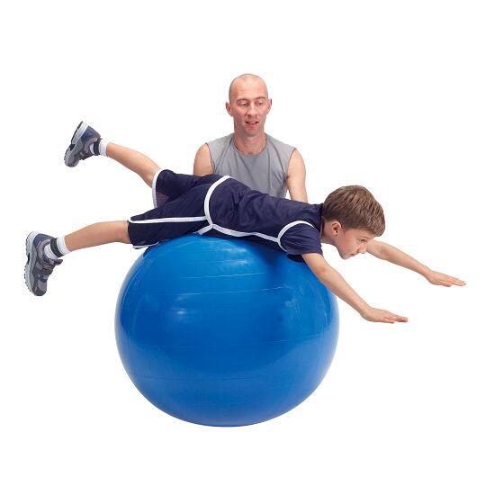 Gymnic Gymnastiekbal ø 65 cm