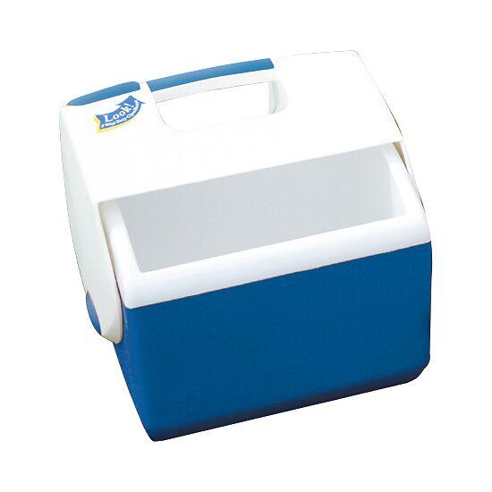 Kleine Verzorgers-IJsbox