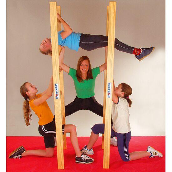 Sport-Thieme® Acrobatieladder-paar