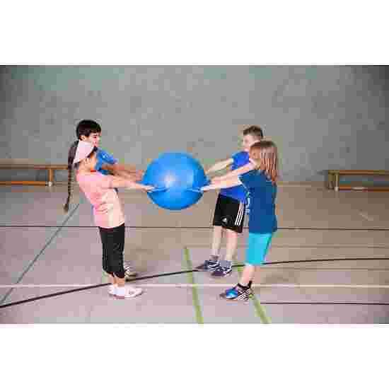 Sport-Thieme Ballon de lutte