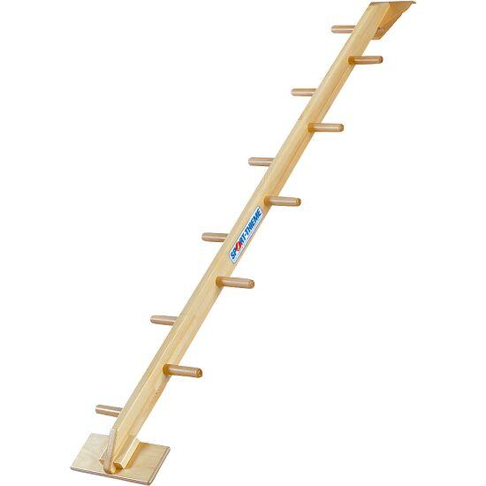 Sport-Thieme Combi-Halve Ladder