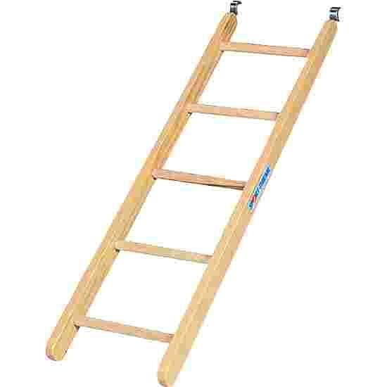 Sport-Thieme Combi-Ladder