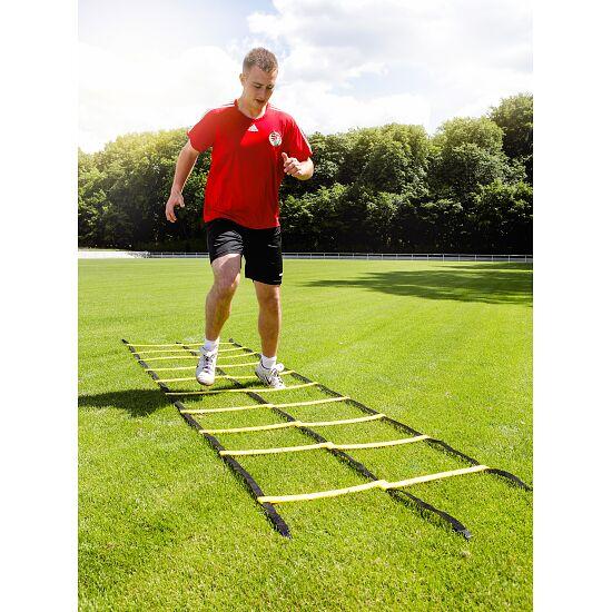 "Sport-Thieme Coördinatieladder ""Agility"" 4 m, Dubbele ladder"