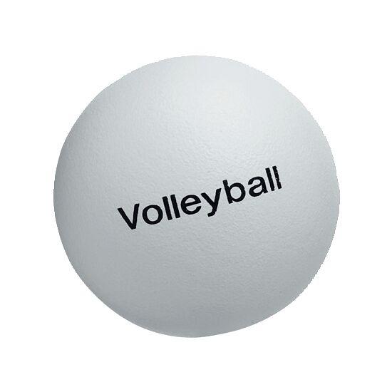 Volley® Volleybal 220 g