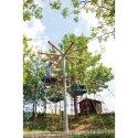 Huck Vogelnestboom