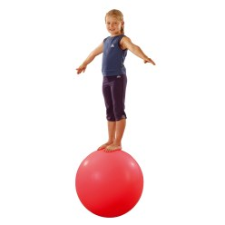 Evenwichtsbal / Loopbal
