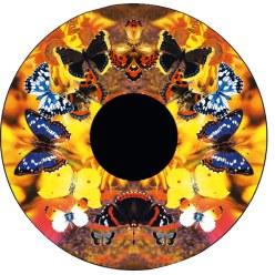 Effectwielen Vlinders