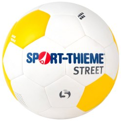 Sport-Thieme® Ballon de football