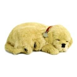 Perfect Petzzz Slapende Puppy's
