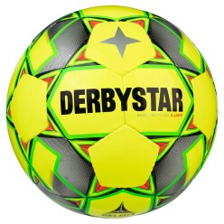 Ballon de futsal Derbystar « Basic Pro »